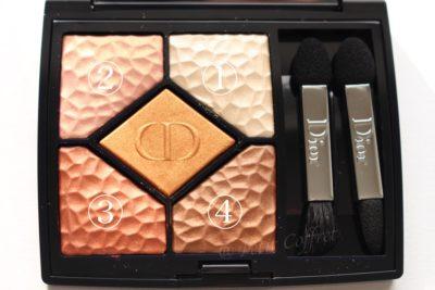 Dior サンククルール ワイルドアース 696シエナ